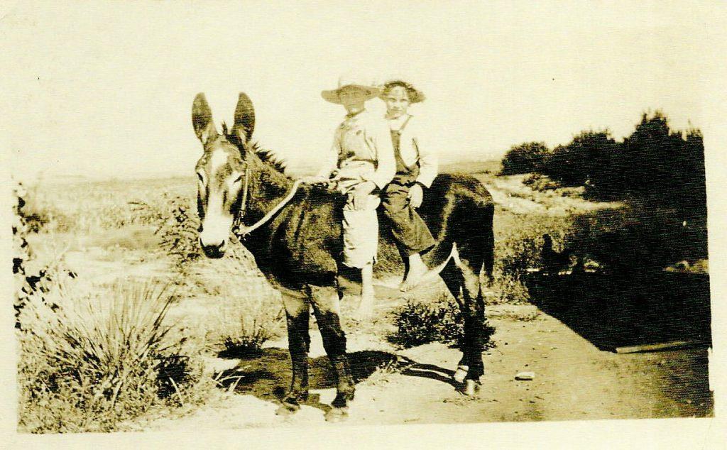Family donkey with boys 1940